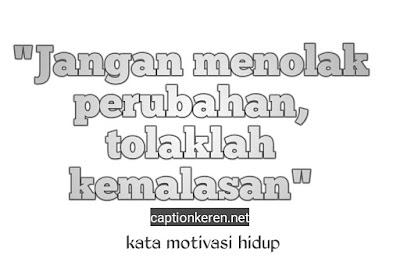 kata kata motivasi hidup bijak