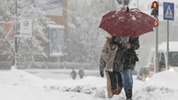 Cod Galben de ninsoare în Oltenia