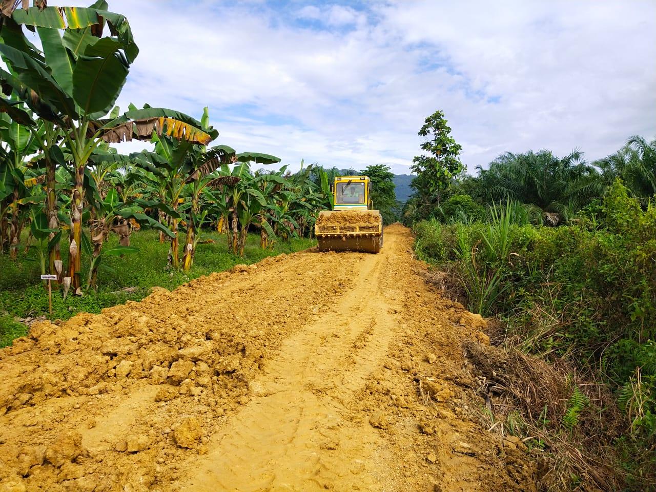 Alat Berat Compek Terus Bergerak Meratakan Dan Memadatkan Jalan