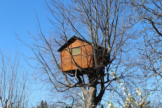 casa-albero-casa sull'albero