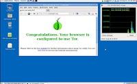 Su internet senza lasciare tracce su PC e sui siti visitati