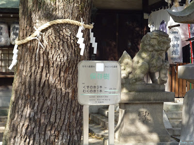 八王子神社保存樹