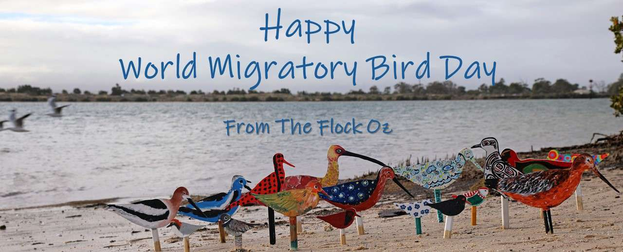 World Migratory Bird Day Wishes Images download