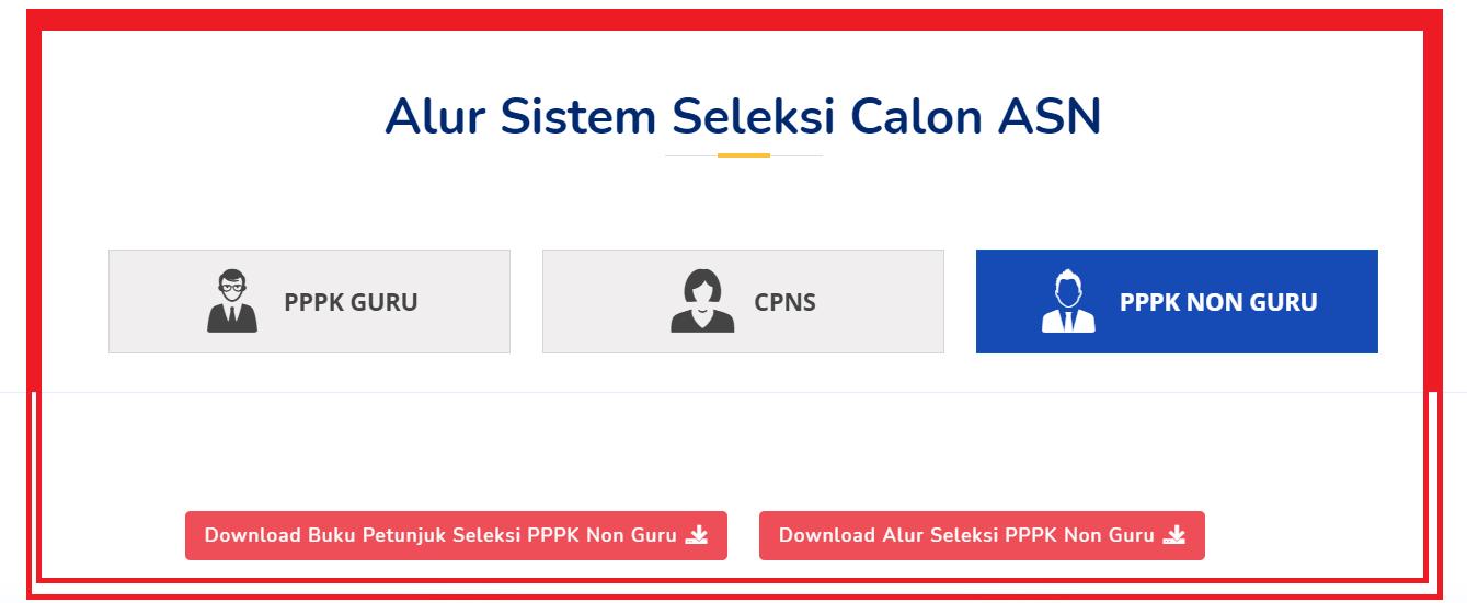 gambar alur sistem seleksi CASN 2021
