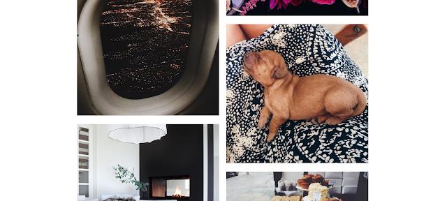 szablon Tumblr blog personalny