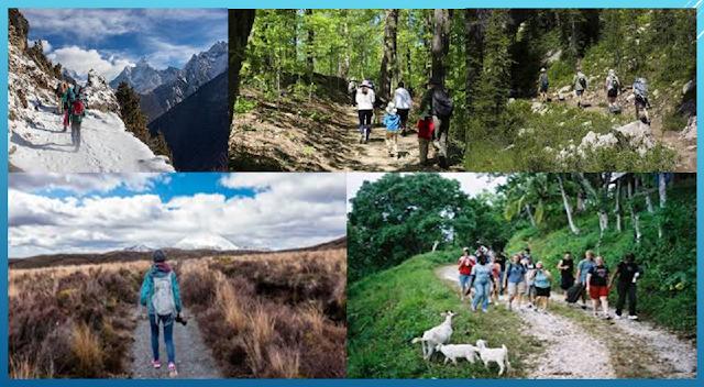 Hiking: A Wonderful Adventure