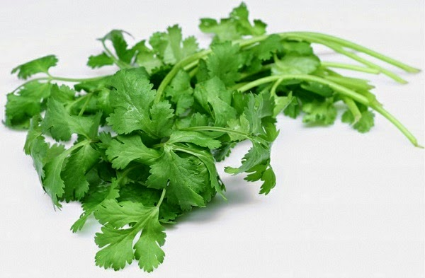 Coriander to cure Pink Eye Conjunctivitis