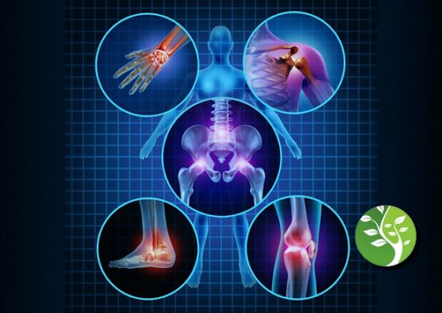 Superalimentos para combatir la artritis: jengibre, bayas, pescado y otros alimentos antiinflamatorios