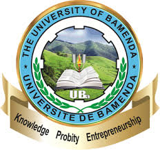 Call _for_applications_for_ teachers_at_the_university_of_Bamenda_through_numerical_replacement