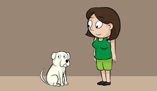 cães e humanos