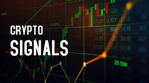 Crypto Signals and Automated Trading Bot