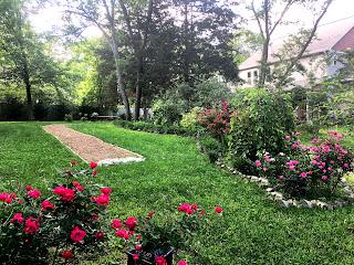 Back gardens at St Francis Cottage 2020