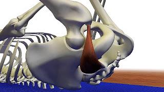 sindrome musculo piramidal