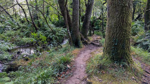 Rincones de Galicia: Islas de Gres