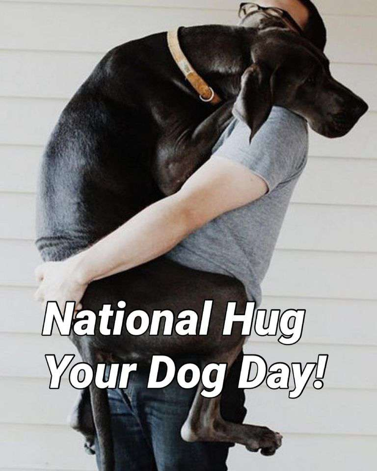 National Hug Your Dog Day Wishes Photos