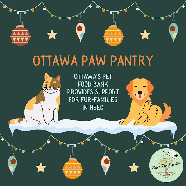 Ottawa's pet food bank: Ottawa Paw Pantry provides food for fur-families in need