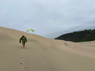 Paraglider wing appears over Cape Kiwanda dune.