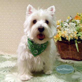 Shamrocks and Polka Dots Dog Bandana