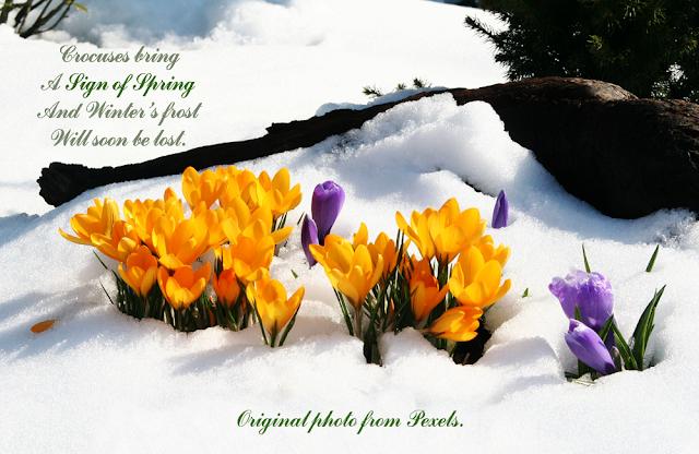 Spring (Pexels image) words by Artsieladie