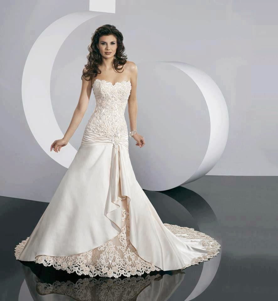 Link Camp: Amazing Luxury Wedding Dress 2014 Collection (46)
