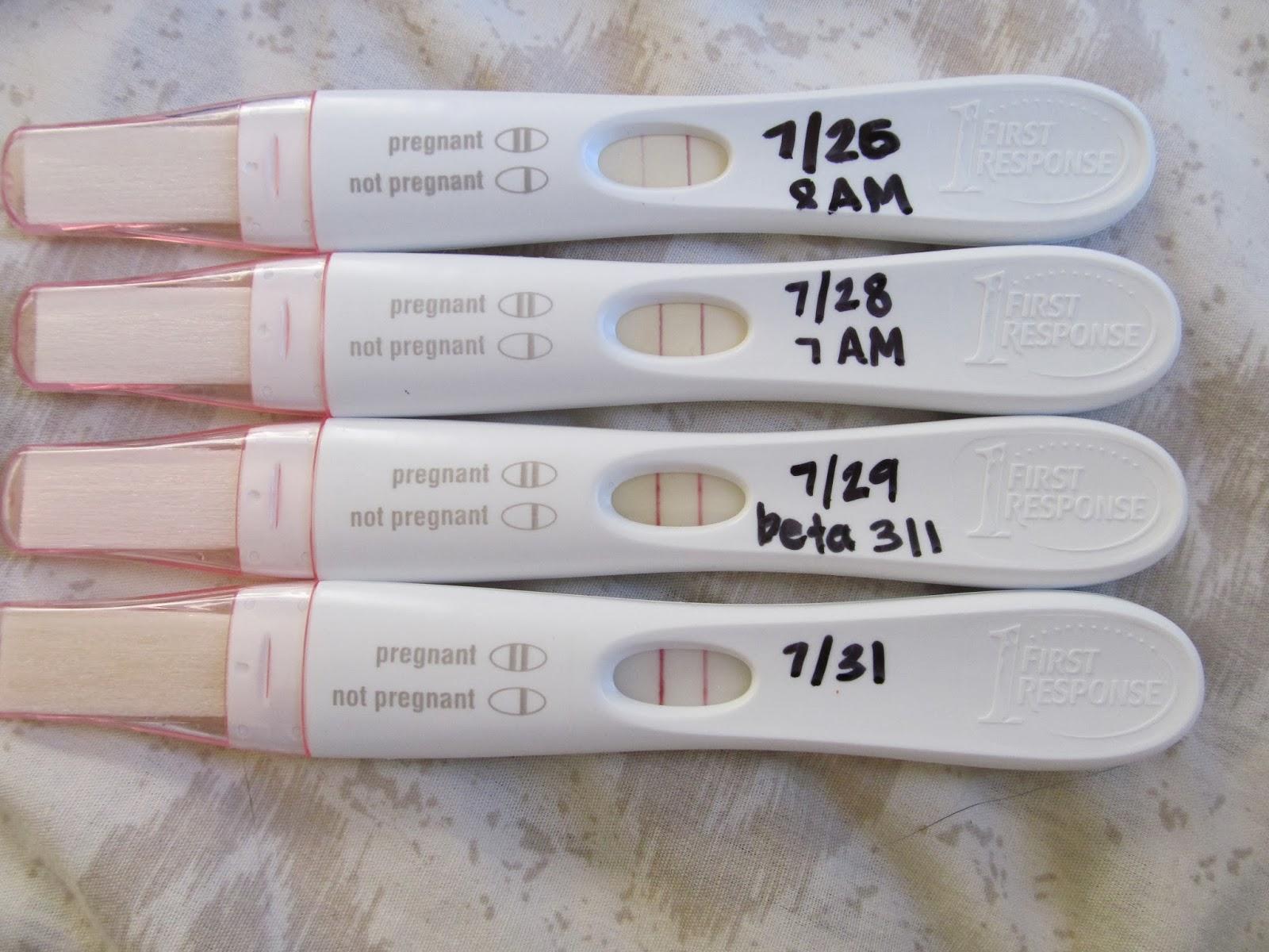 Ectopic Pregnancy Test Line Progression Ectopic Pregnancy