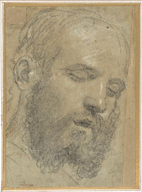 Paris Bordone (1500-1571) Tête d'Homme Barbu, Yeux Clos, ca. 1533 Morgan Library and Museum