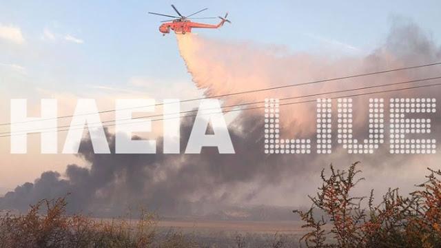 Πυρκαγιά σε εξέλιξη στα Λεχαινά Ηλείας – Έκλεισε η Εθνική Οδός Πατρών - Πύργου