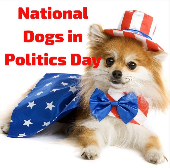 National Dogs in Politics Day Wishes pics free download