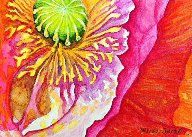 Pink Poppy Abstract by Minaz Jantz (Watercolor)