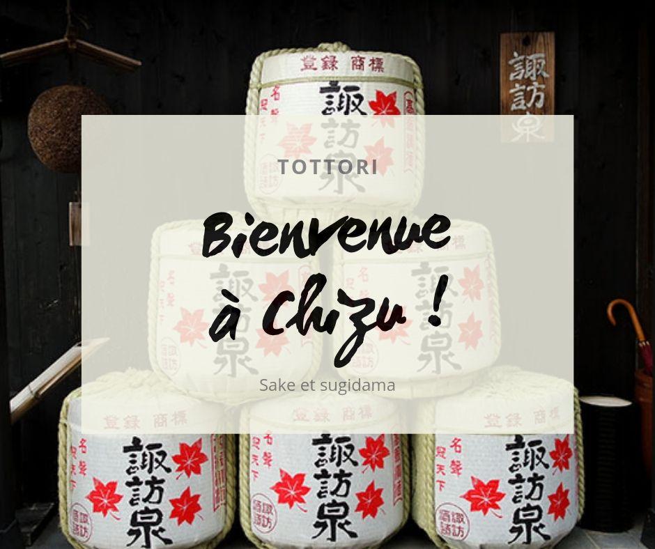 Bienvenue à Chizu !