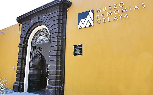 """El Museo de Momias de Celaya cuenta con dos salas de exhibición. En la primera se encuentran principalmente los cuerpos momificados de adultos y en la segunda de mujeres con sus bebés.   """"Muchas de las momias que descubrieron tuvieron vidas que pasaron desapercibidas, que fueron muy tristes, llenas de pobreza y que pasaron soledad,"""