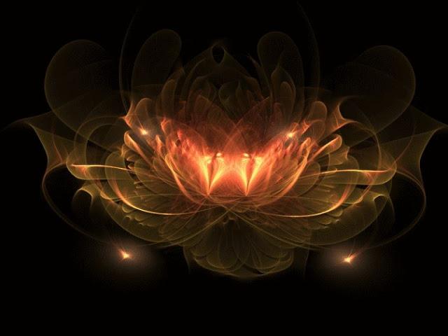 «Цветок счастья и удачи»: загадайте желание и оно сбудется через 2-3 дня!