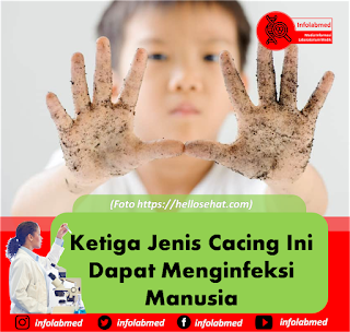 infeksi cacing,infeksi cacing pita,infeksi cacing gelang,infeksi cacing pada anak,infeksi cacing kremi,infeksi cacing kulit,infeksi cacing pada anak pdf,infeksi cacing pada kulit,infeksi cacing pdf,infeksi cacing tambang pdf,infeksi cacing hati,infeksi cacing gelang pada manusia,infeksi cacing adalah,infeksi cacing ascaris lumbricoides,infeksi cacing ancylostoma braziliense,infeksi cacing ancylostoma duodenale,infeksi cacing ascaris,infeksi cacing anak,anemia infeksi cacing,anamnesis infeksi cacing,infeksi akibat cacing kremi,cara infeksi cacing ascaris lumbricoides,cara infeksi cacing ancylostoma duodenale,infeksi cacing tambang adalah,pengobatan infeksi cacing ascaris lumbricoides,infeksi cacing menyebabkan anemia,obat infeksi cacing ancylostoma braziliense,infeksi cacingan pada anak,infeksi cacing kremi pada anak,infeksi cacing tambang penyebab anemia,bentuk infeksi cacing pita,bagaimana infeksi cacing,infeksi cacing pada balita