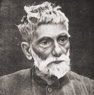Praful Chandra Ray