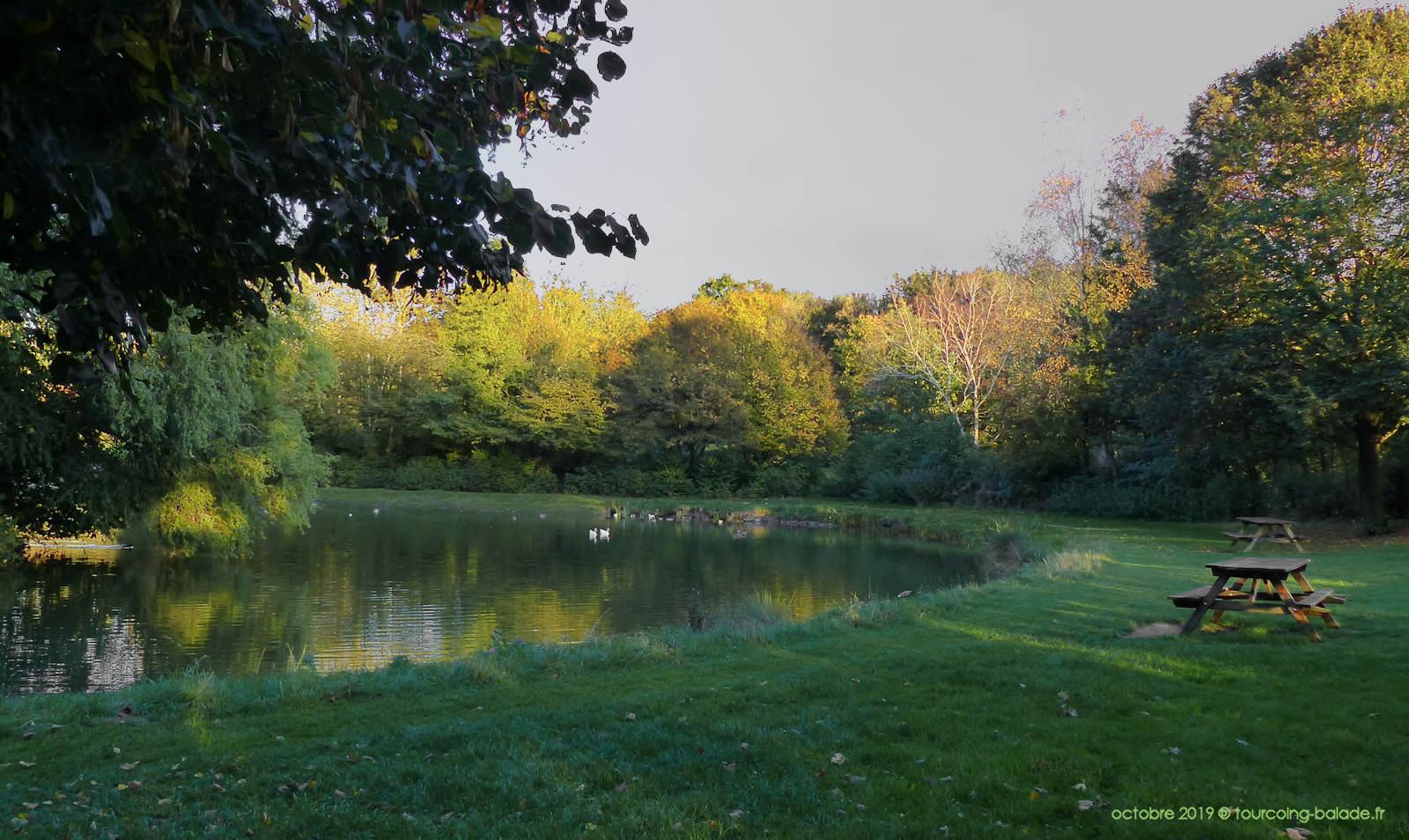 Parc de l'Yser, Tourcoing - Plan d'eau.