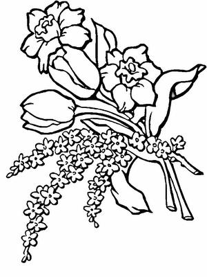 Primavera 36 Desenhos De Flores Para Colorir E Pintar