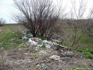 Лысовка, Покровский р-н. Стихийная свалка возле кладбища и пруда