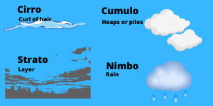 4 types of clouds