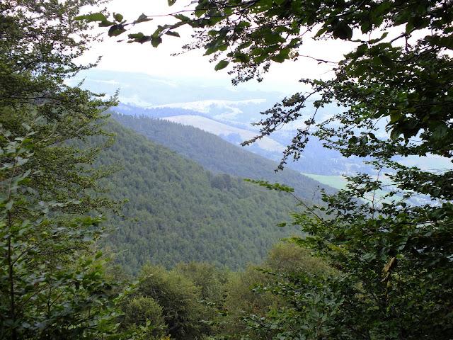 Вид на предгорья
