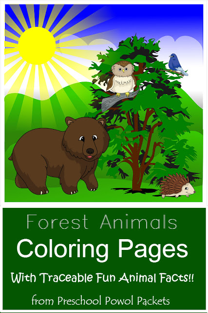 forest animals preschool theme theme science experiments and activities for 891