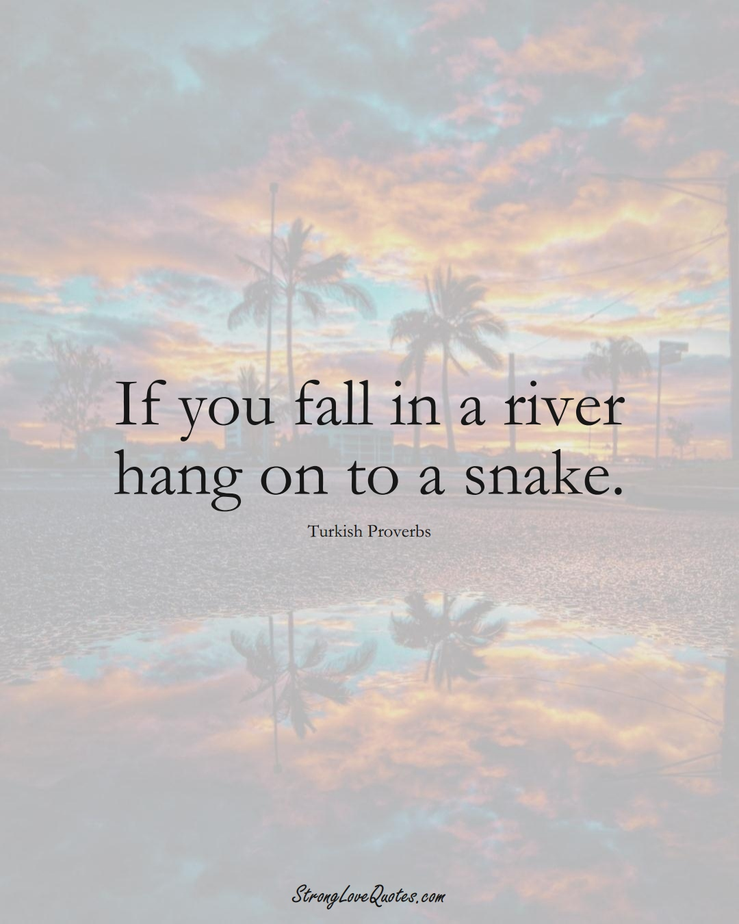 If you fall in a river hang on to a snake. (Turkish Sayings);  #MiddleEasternSayings