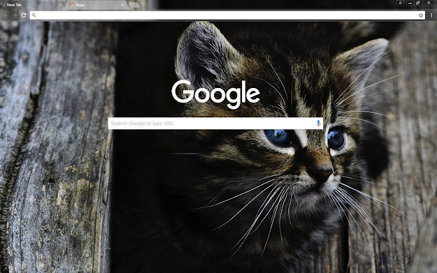 Dark Kitten Google Theme