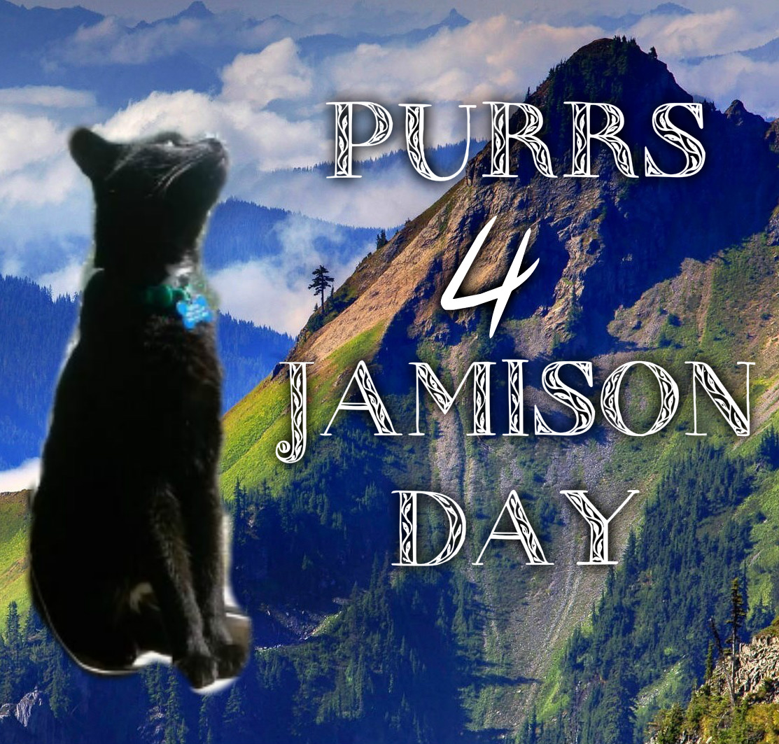 Purrs for Jamison
