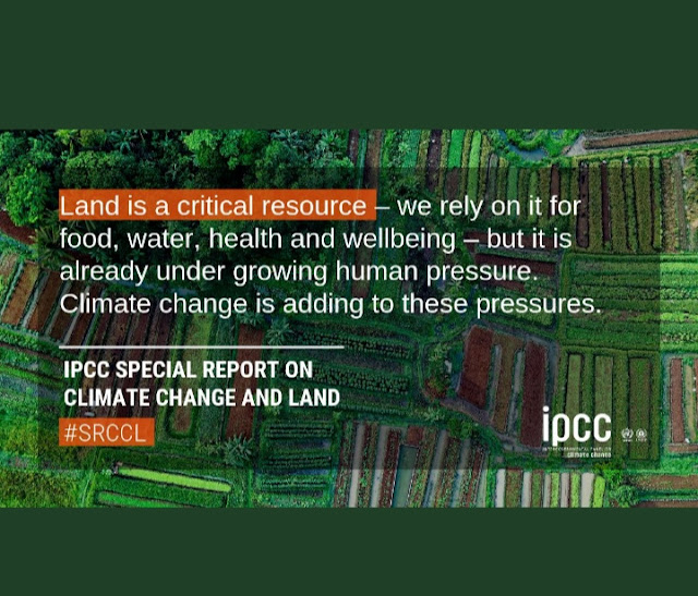IPCC's new report on climate change and land