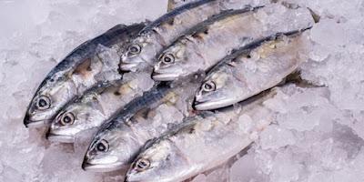 Cara Mempertahankan Kesegaran Ikan