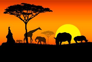 Insieme per l'Africa