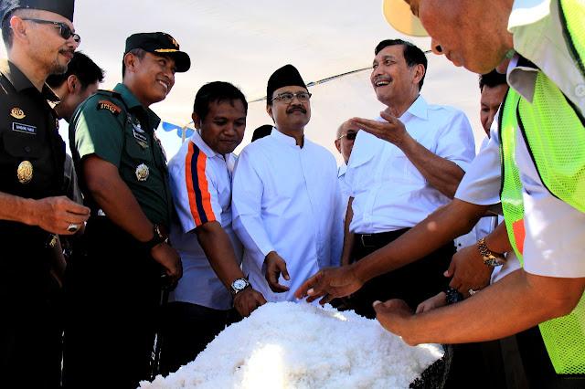 Luhut: Presiden Setuju Impor Gula dan Garam Langsung dari Industri