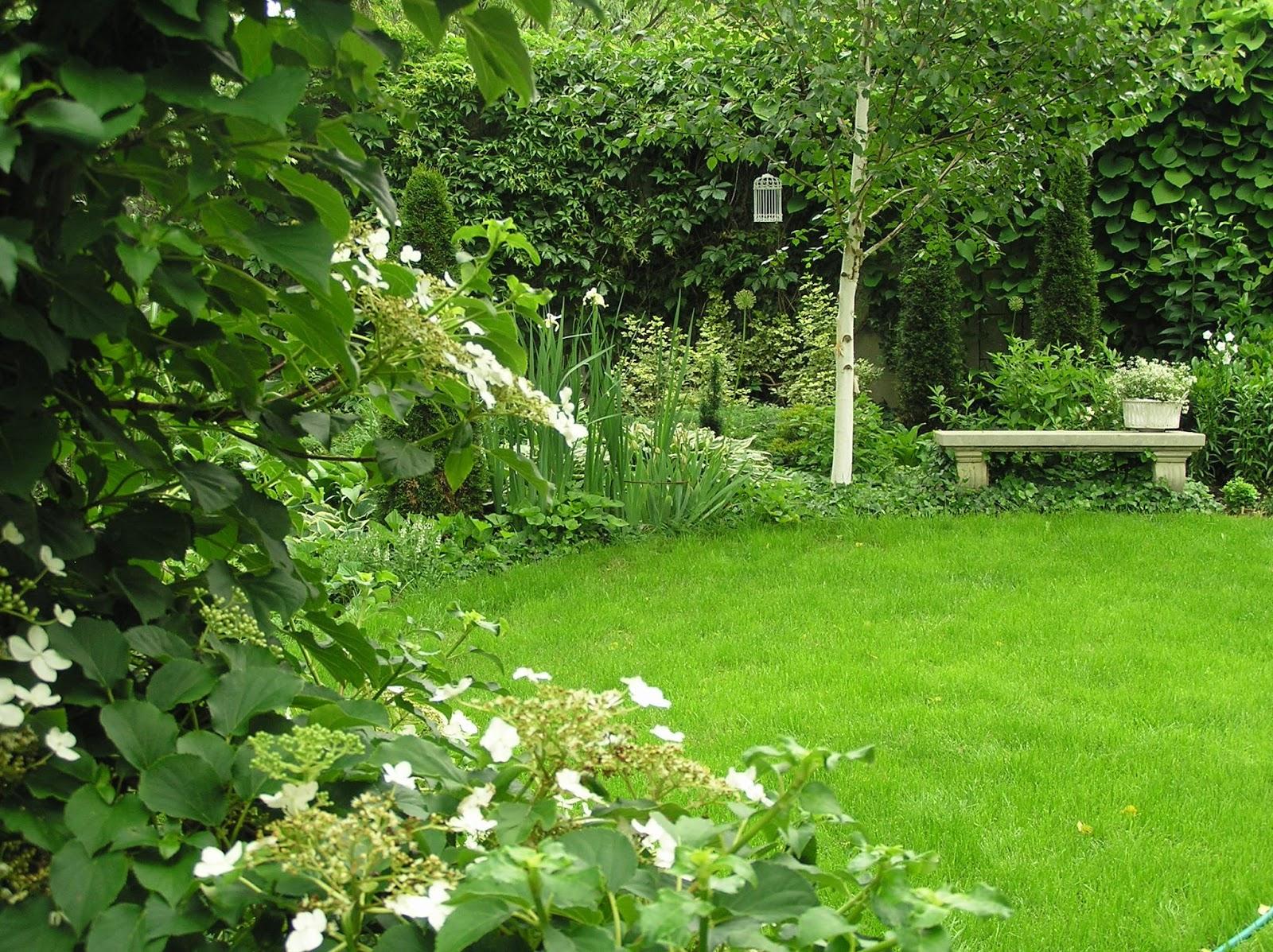 Ogród Tamaryszka: BIAŁY OGRÓD