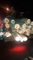 Berantas Ilegal Loging, Kodim Sumbawa dan KPH Batulante Gelar Patroli Gabungan