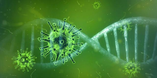 Covid-19 reativa vírus ancestral no genoma e leva a casos mais graves